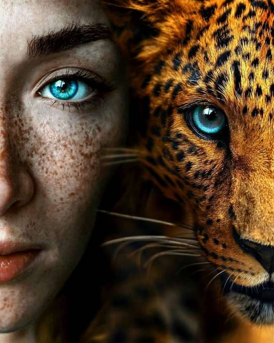 Картина по номерам 40x50 Голубоглазые девушка и леопард